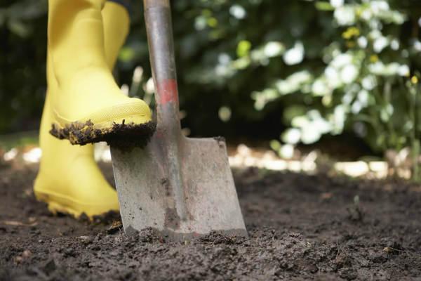 копаем землю под грядку