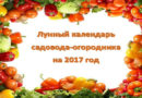 Лунный посевной календарь для садовода и огородника на 2017 год