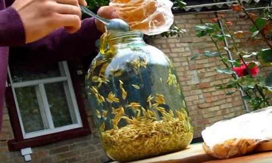 Добавляем мёд
