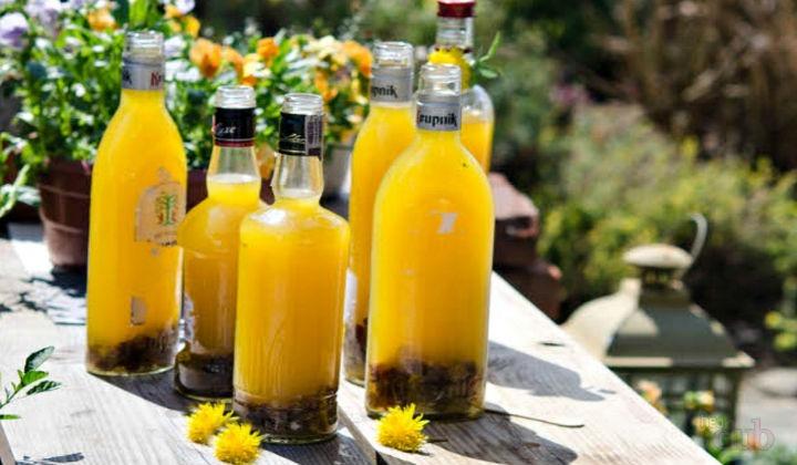 Homemade Dandelion Wine