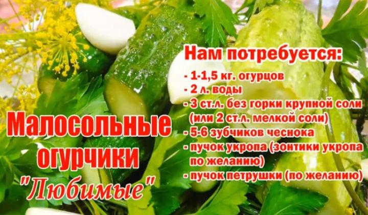 Ингредиенты для засолки огурцов