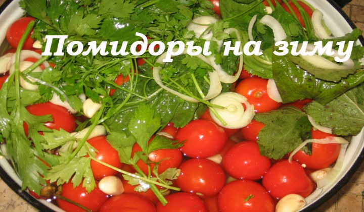 Вкусные помидоры на зиму – пальчики оближешь. 11 лучших рецептов заготовки помидоров