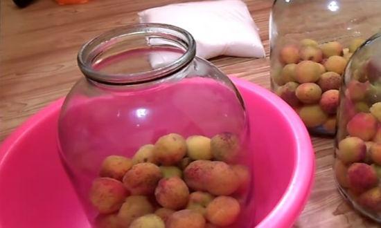 Раскладываем абрикосы