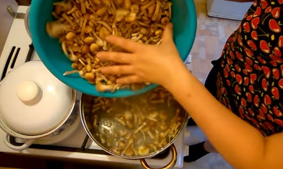 Закладываем грибы в воду