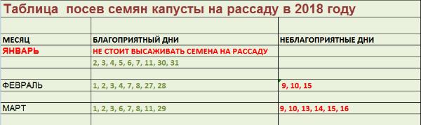 таблица посева капусты
