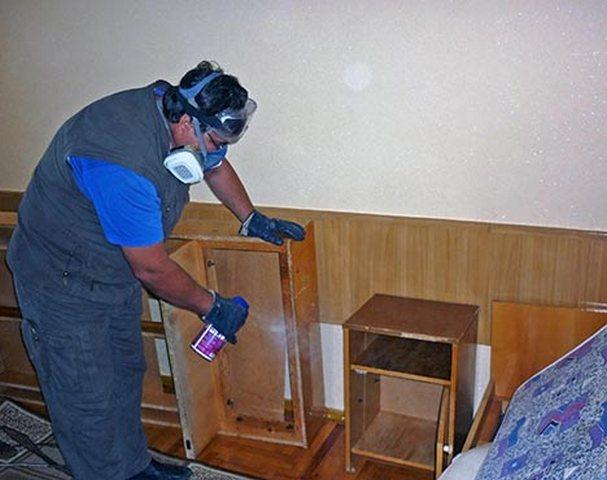 обработка мебели от клопов