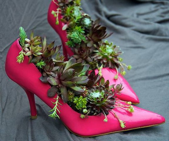 цветы в туфельках