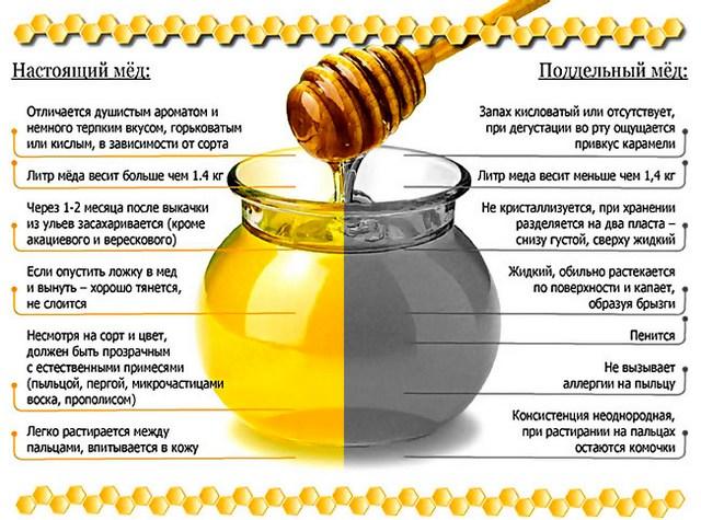 признаки настоящего и поддельного мёда