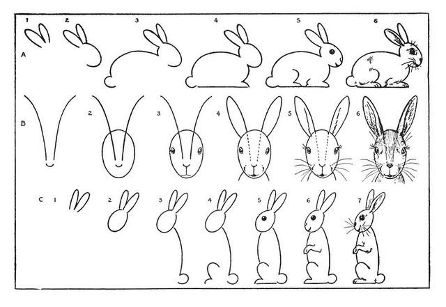 эскизы зайца