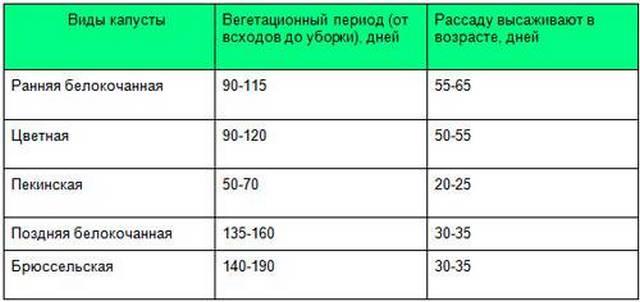 таблица вегетации