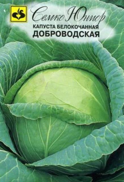 капуста Доброводская