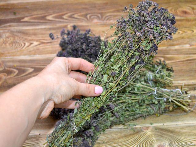Орегано, что это за приправа, полезные свойства и противопоказания, с чем едят и как приготовить в домашних условиях