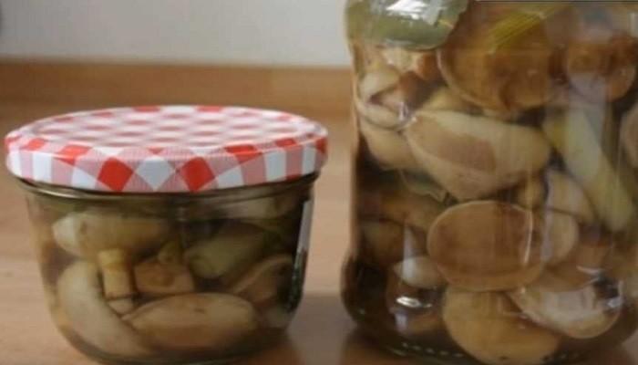 Рецепт маринованных маслят на 1 литр воды