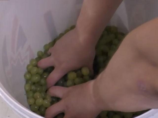 разминаем виноград