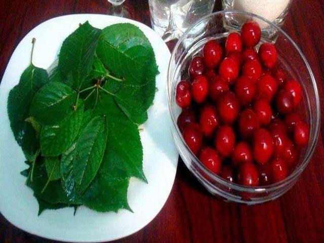 вишня и листья