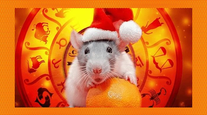 Праздничные салаты на Новый 2020 год в виде крысы — 10 рецептов и 6 вариантов оформления