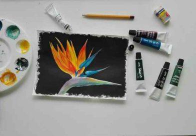Лёгкие рисунки красками для начинающих на бумаге, учимся поэтапно гуашью и акварелью