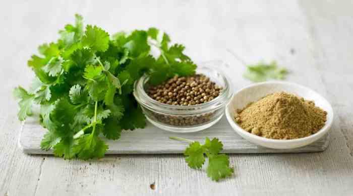 кориандр семена, порошок и кинза