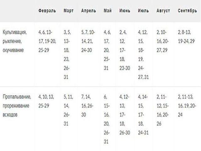 таблица прополки