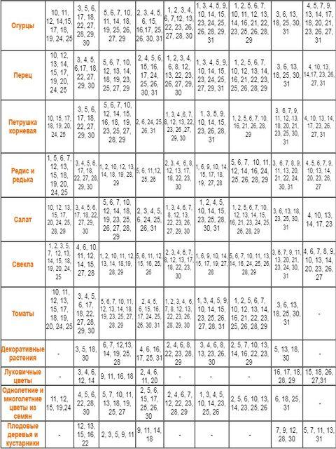 календарь посева по дням