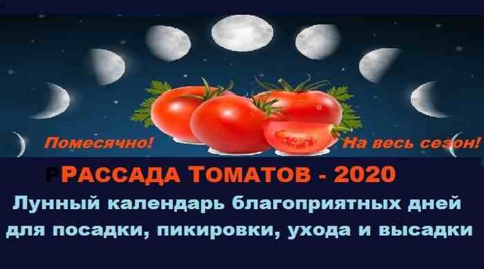лунный календарь посадки рассады помидор