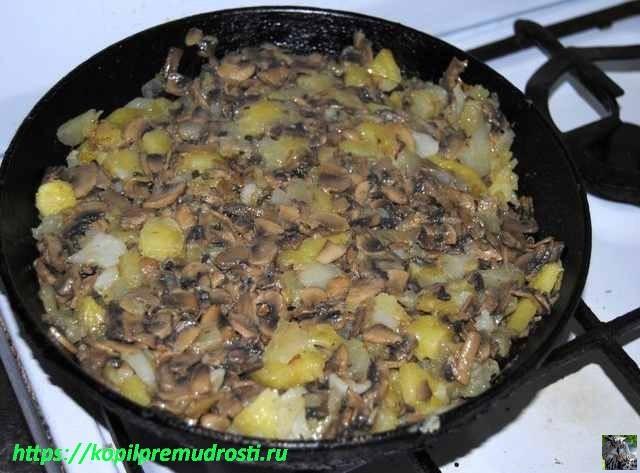 готовые грибы с картошкой