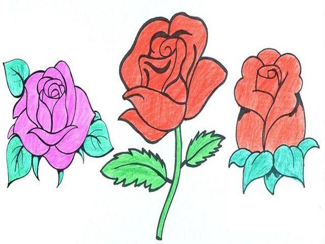 рисунок роз